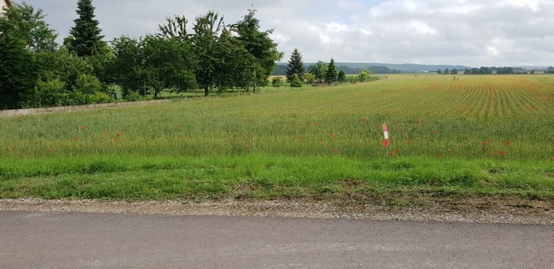 Vente terrain Evry 55 000€ - Photo 3