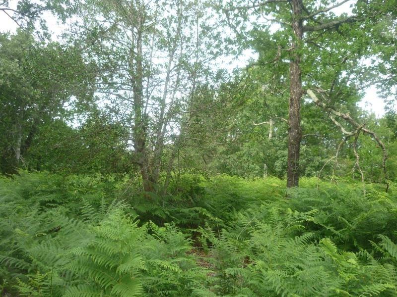 Vente terrain Gastes 126000€ - Photo 2