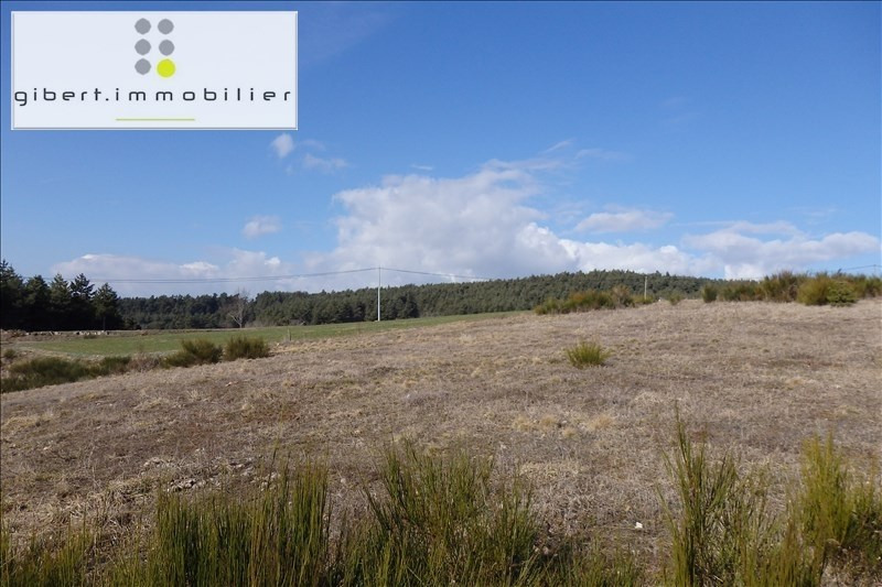 Vente terrain Chaspinhac 41 600€ - Photo 2