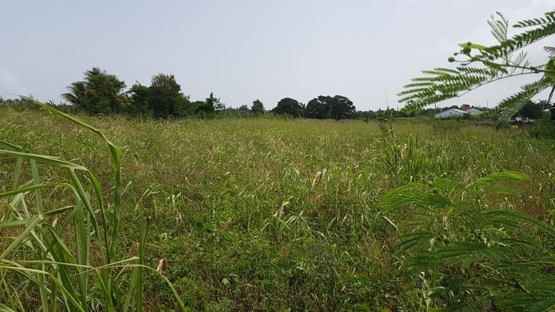 Vente terrain St francois 235 000€ - Photo 1