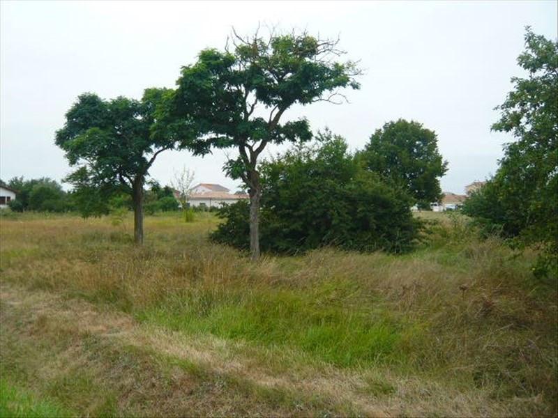 Vente terrain Cornebarrieu 644800€ - Photo 2