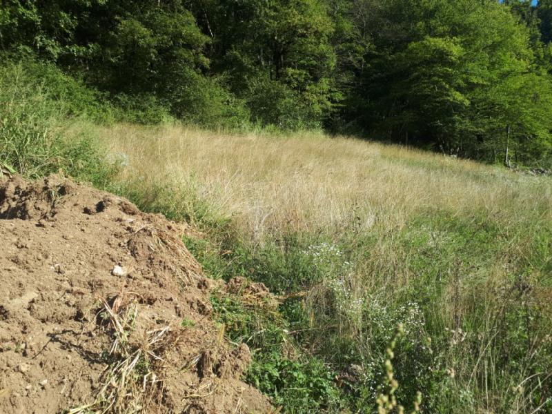 Venta  terreno Thones 183000€ - Fotografía 3