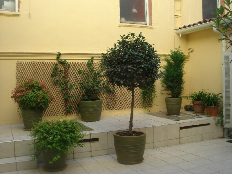 Rental apartment Toulouse 2 550€ CC - Picture 3