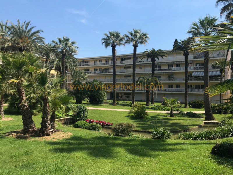 Vendita nell' vitalizio di vita appartamento Cannes 135000€ - Fotografia 1