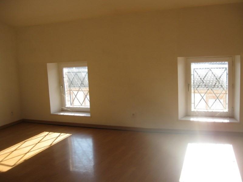 Rental apartment Grisolles 390€ CC - Picture 2
