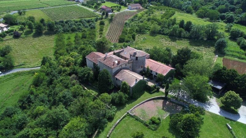 Vente de prestige château Marcilly d azergues 2300000€ - Photo 1