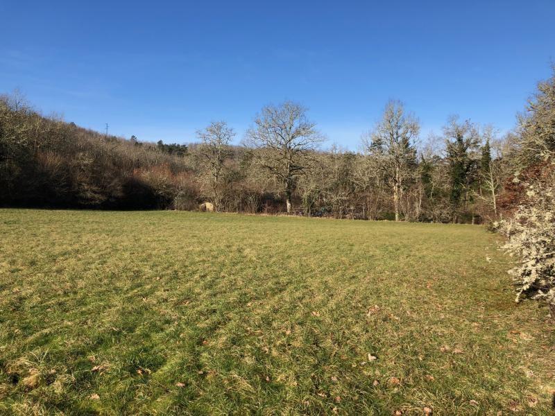 Vente terrain St amand de coly 59500€ - Photo 1