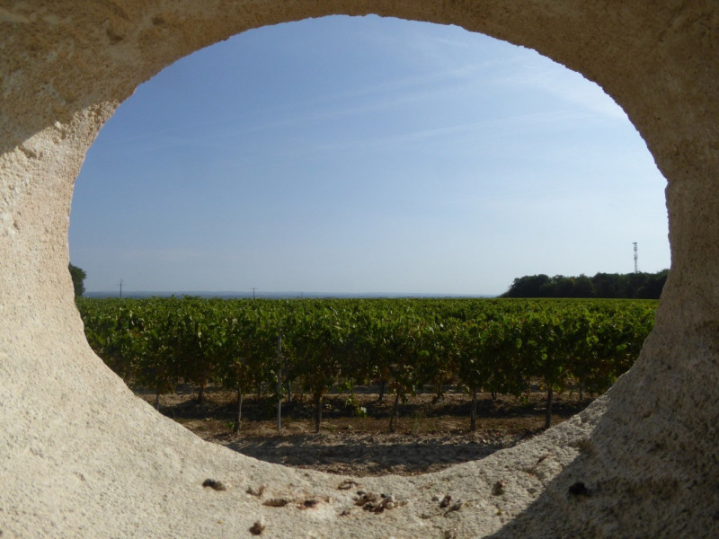 Sale house / villa Saint-sulpice-de-cognac 416725€ - Picture 3