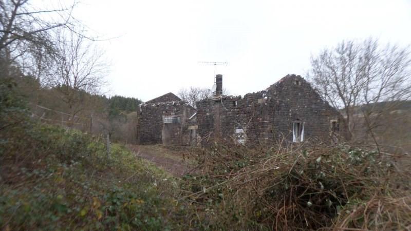 Sale house / villa Le brignon 20000€ - Picture 4