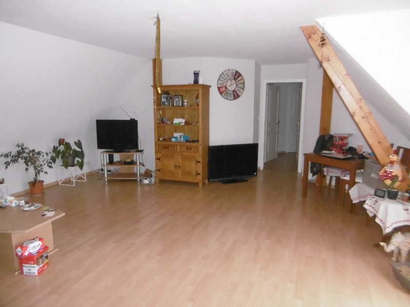 Location appartement Blodelsheim 745€ CC - Photo 1