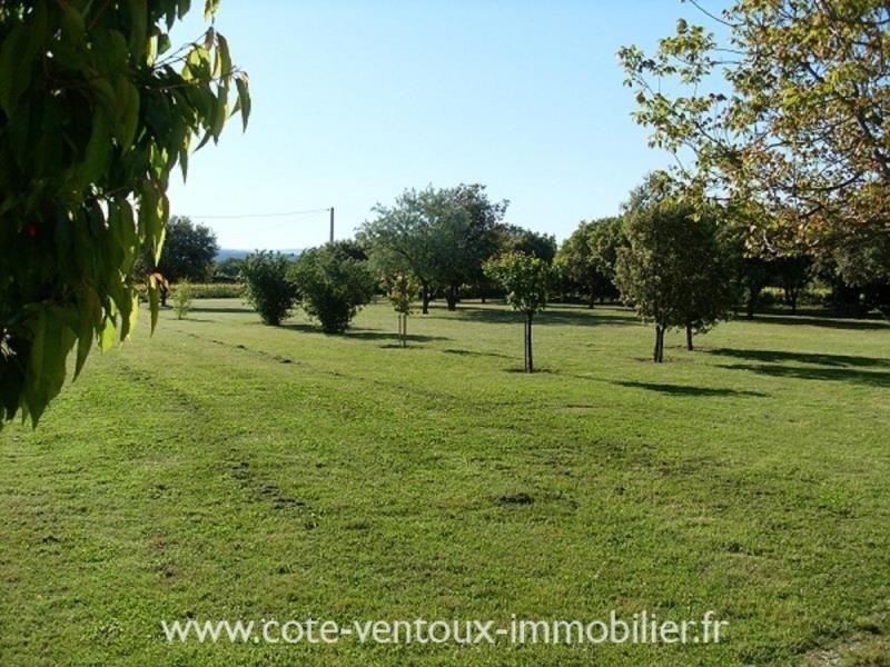 Vente de prestige maison / villa Mazan 560000€ - Photo 15