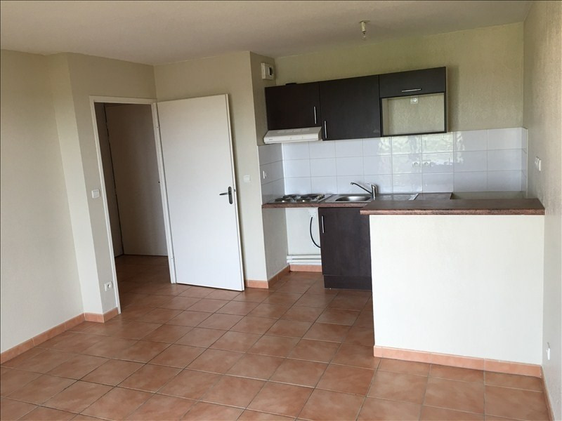 Location appartement Castelnau d'estretefonds 560€ CC - Photo 1