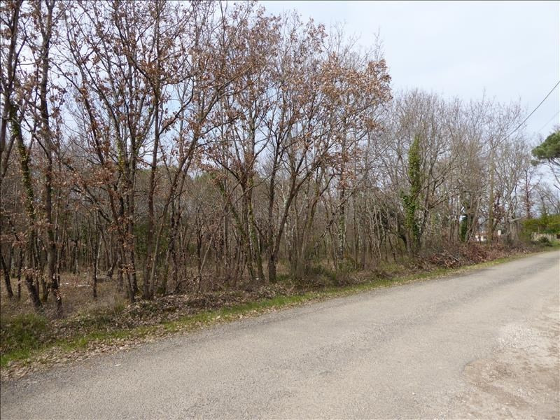 Vente terrain Montauban 124 000€ - Photo 2