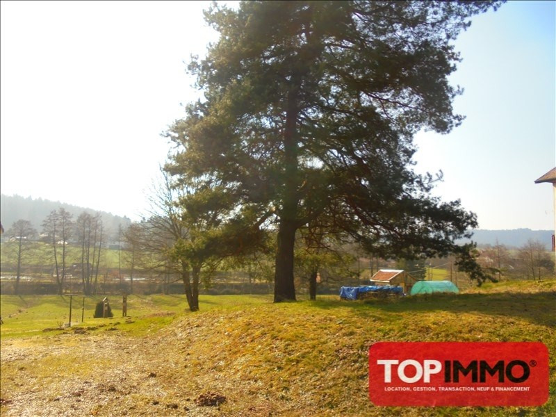 Verkauf grundstück Bruyeres 18000€ - Fotografie 2