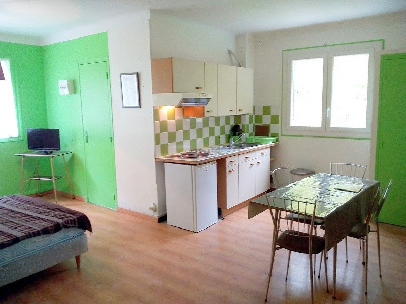 Location vacances appartement Prats de mollo la preste 600€ - Photo 2