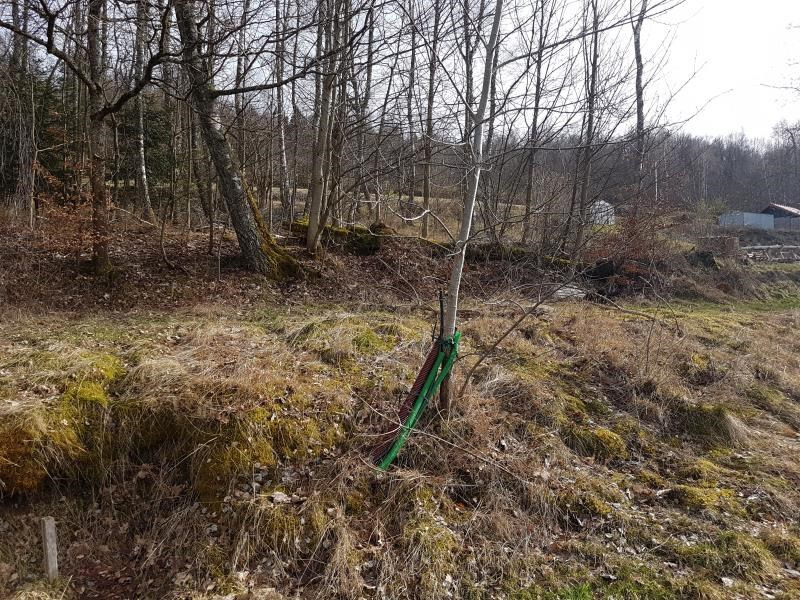 Vente terrain Anould 33000€ - Photo 4