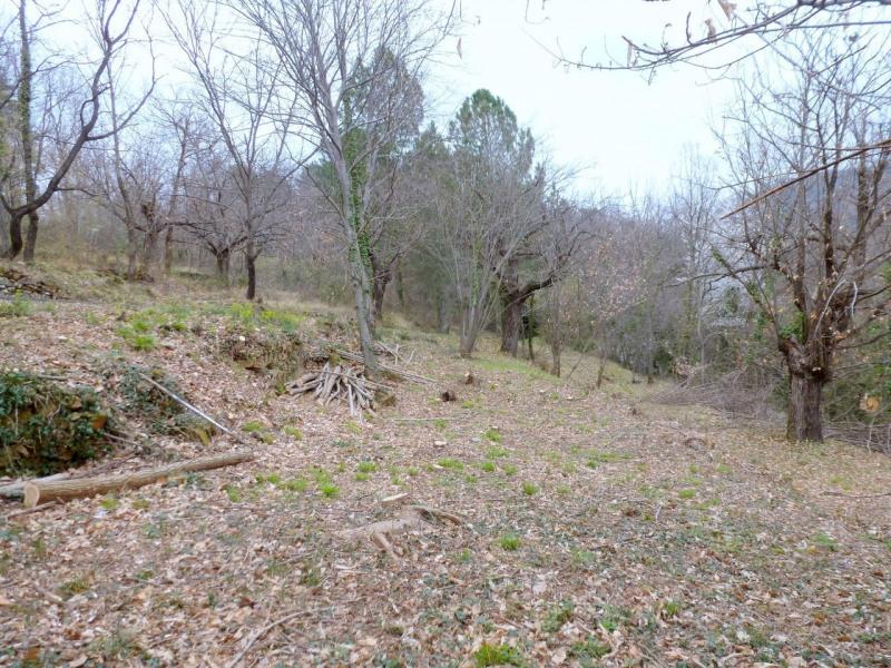 Vente terrain Aubenas 34000€ - Photo 3
