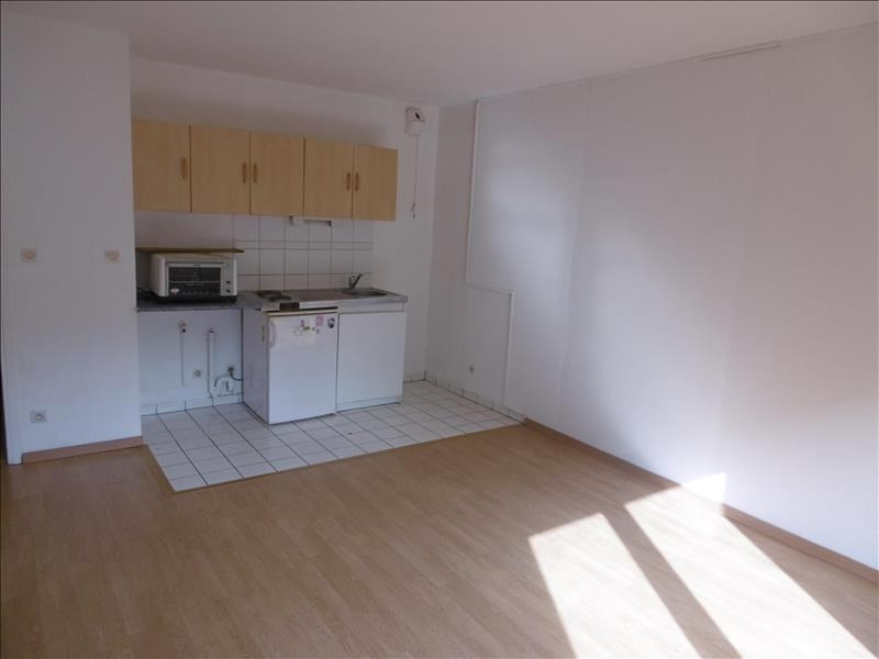 Location appartement Mulhouse 350€ CC - Photo 3