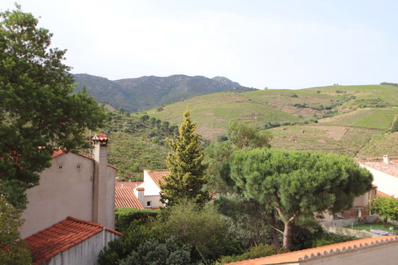 Vente appartement Banyuls sur mer 182 000€ - Photo 1
