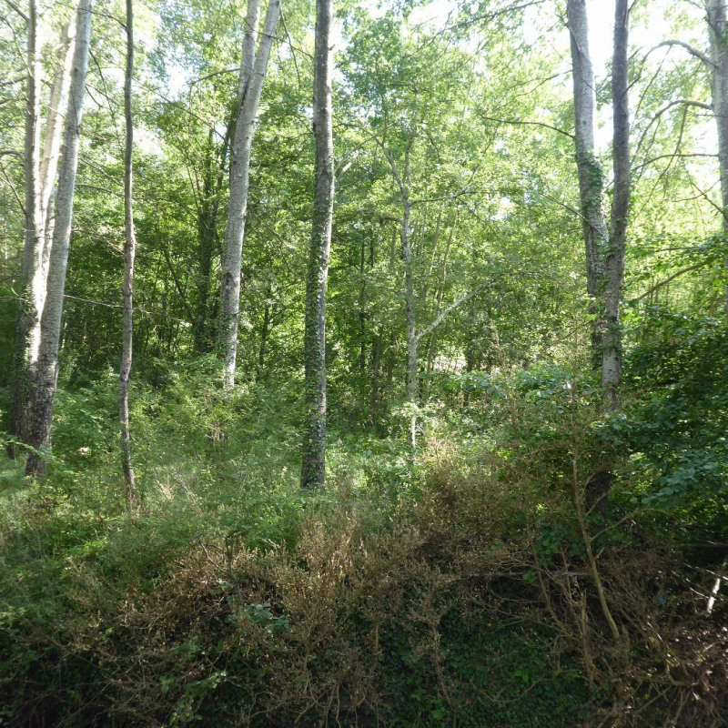 Vente terrain Vallon-pont-d'arc 400 000€ - Photo 11