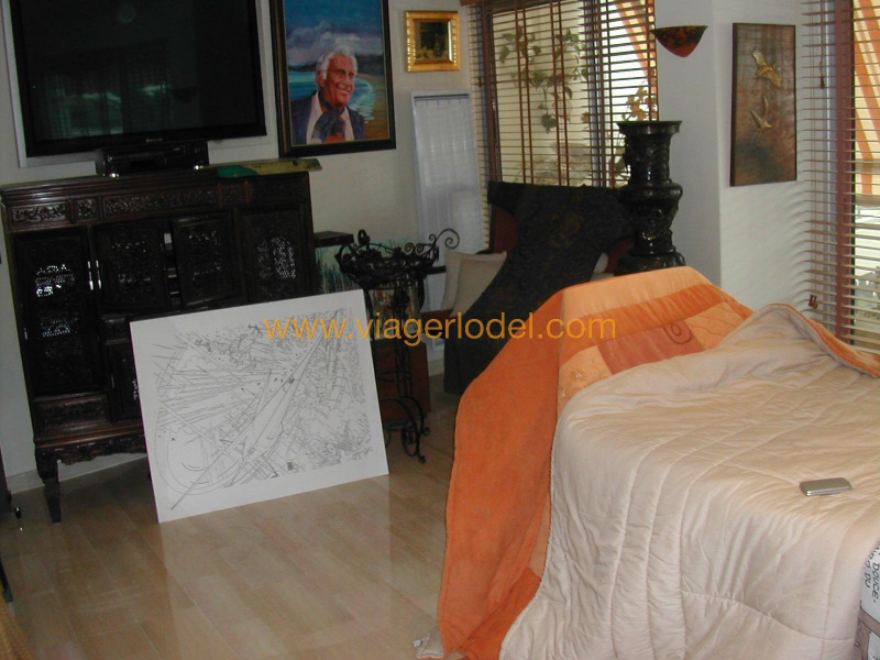 Viager appartement Golfe-juan 230 000€ - Photo 19