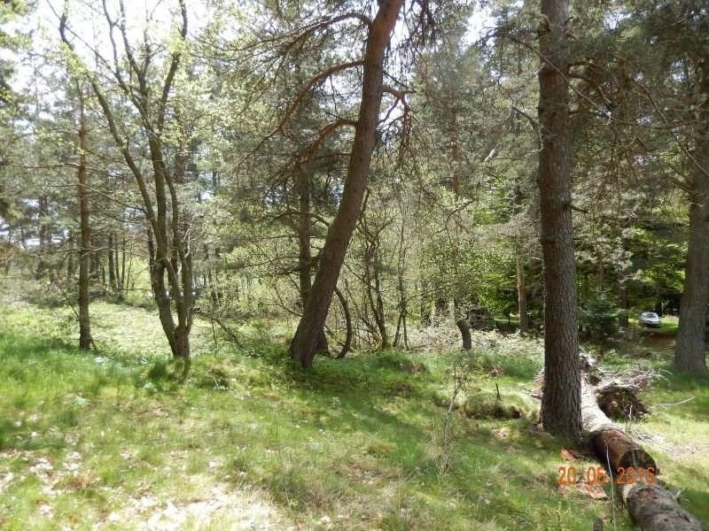 Vente terrain Le chambon sur lignon 20000€ - Photo 1