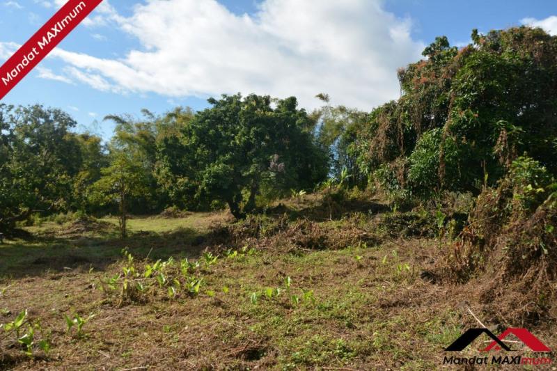 Vente terrain Saint benoit 1106897€ - Photo 1