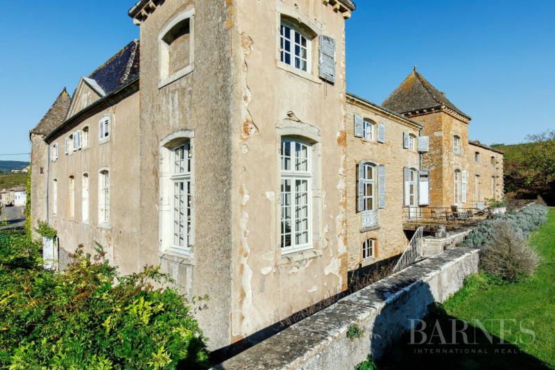 Vente de prestige château Mâcon 1770000€ - Photo 6