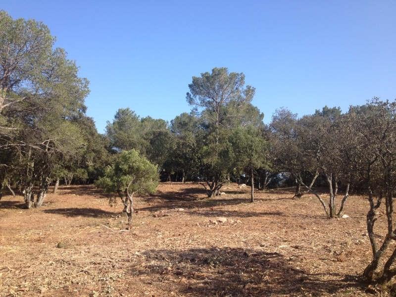 Vente terrain Le cannet des maures 127000€ - Photo 3