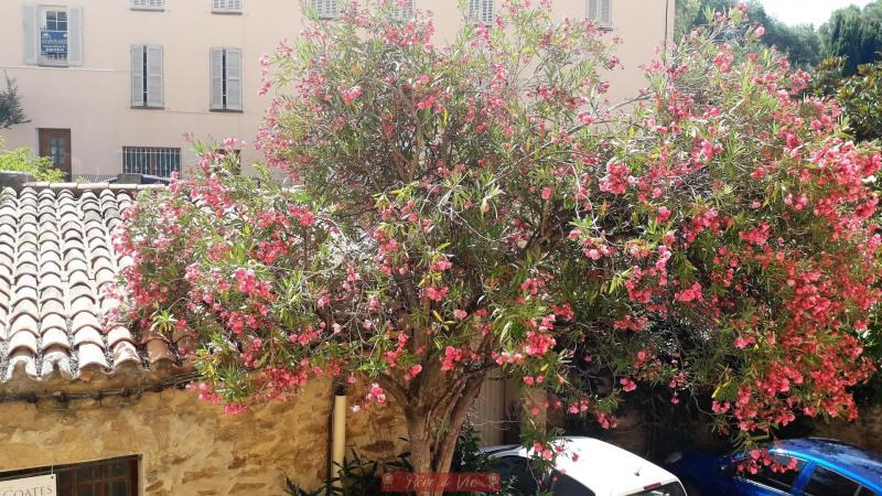 Vente maison / villa Bormes les mimosas 250000€ - Photo 2