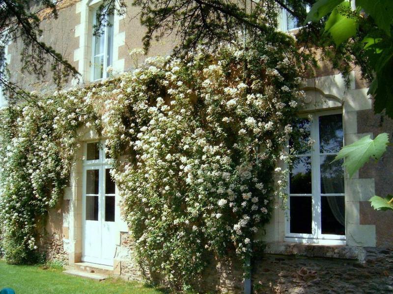 Vente de prestige maison / villa Angers 30 mm nord 360000€ - Photo 2