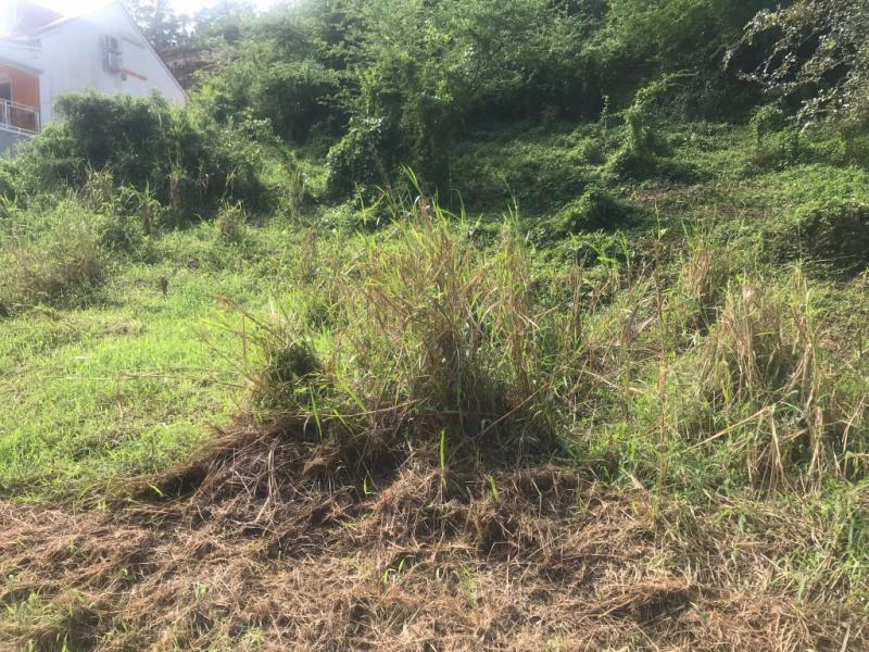 Vente terrain Les abymes 125000€ - Photo 2