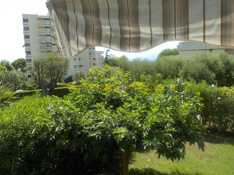 Life annuity apartment Antibes 65000€ - Picture 14