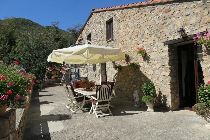 Vente de prestige maison / villa Ceret 895000€ - Photo 3