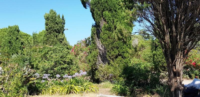 Location vacances maison / villa Pietrosella 850€ - Photo 13