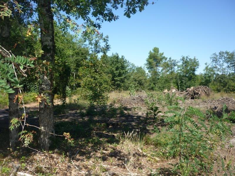 Vente terrain Saugnac et muret 111000€ - Photo 3