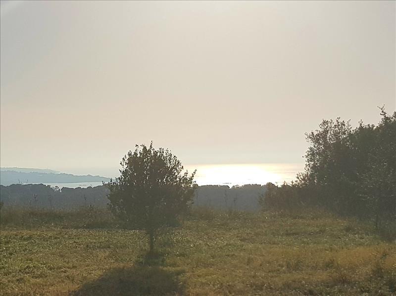 Vente terrain Corbara 720000€ - Photo 5