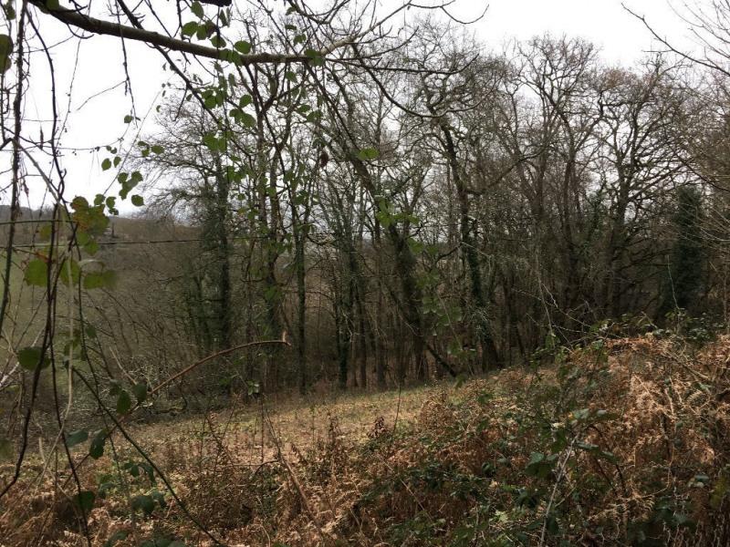 Vente terrain Coursac 28000€ - Photo 3