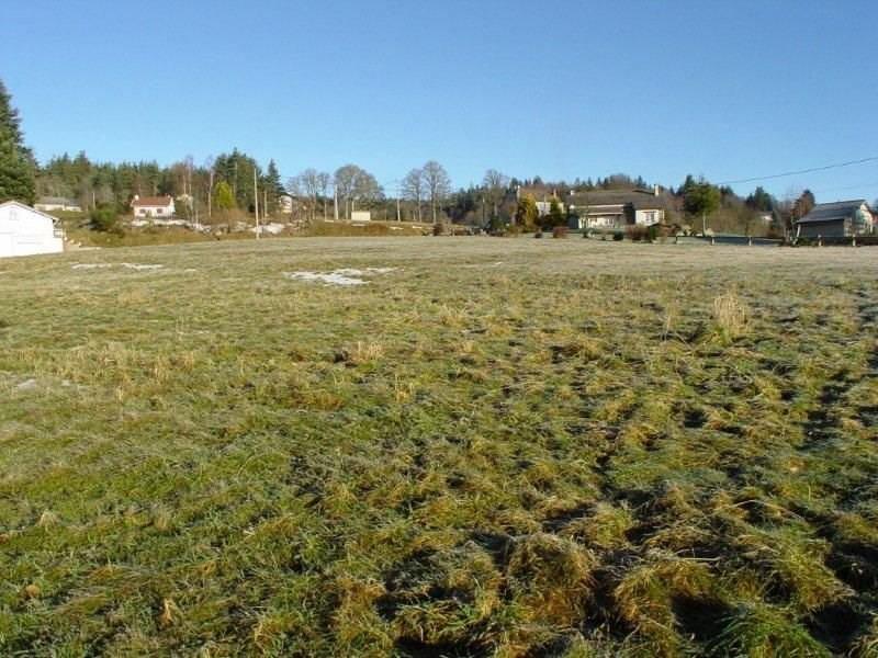 Vente terrain Le chambon sur lignon 38000€ - Photo 1