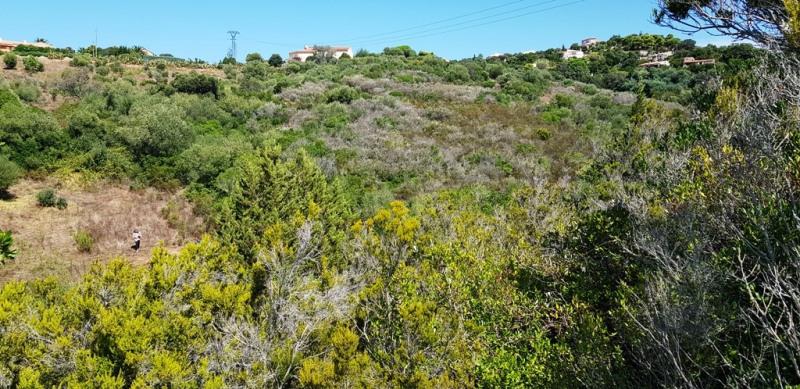 Vente terrain Pietrosella 155000€ - Photo 10