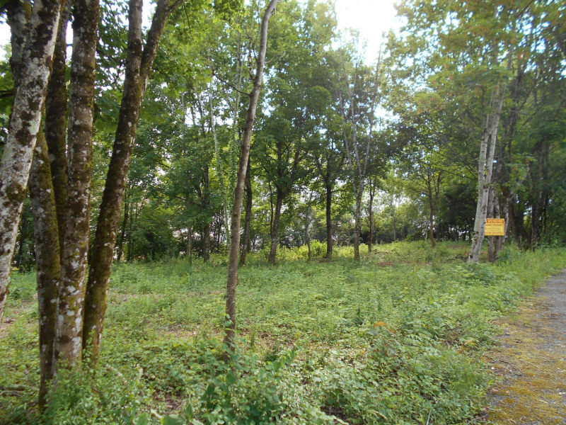 Vente terrain Lons-le-saunier 100 000€ - Photo 1