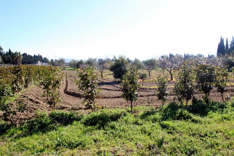 Venta  terreno Saint cyprien 315000€ - Fotografía 1