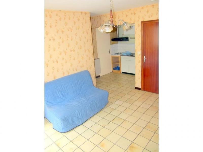 Vente appartement Prats de mollo la preste 29000€ - Photo 5