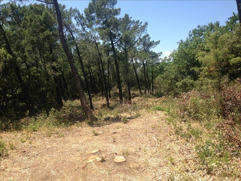 Vente terrain Bollene 44000€ - Photo 3