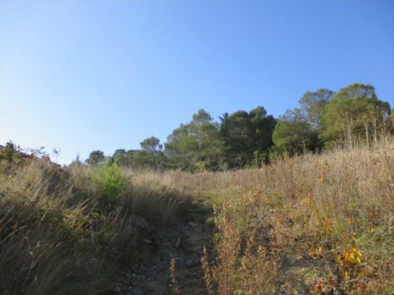 Vente terrain Villemoustaussou 75000€ - Photo 3