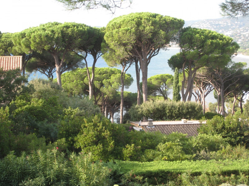 Location vacances maison / villa Cavalaire 2800€ - Photo 31