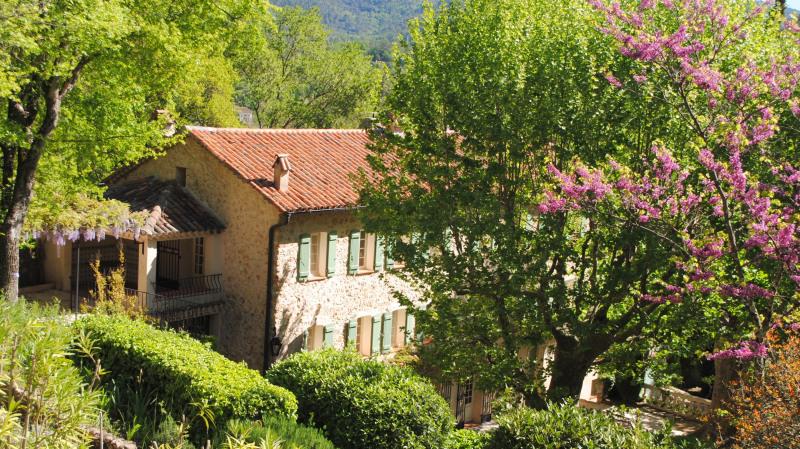 Immobile residenziali di prestigio casa Bargemon 1850000€ - Fotografia 14