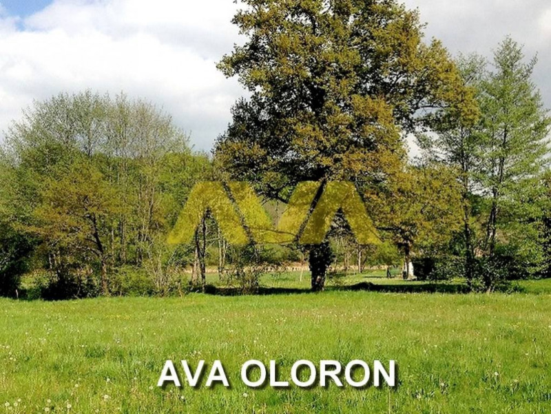 Vente terrain Oloron-sainte-marie 46 461€ - Photo 1