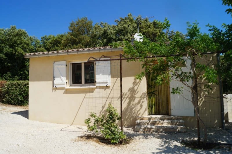 Immobile residenziali di prestigio casa Barjac 625400€ - Fotografia 3