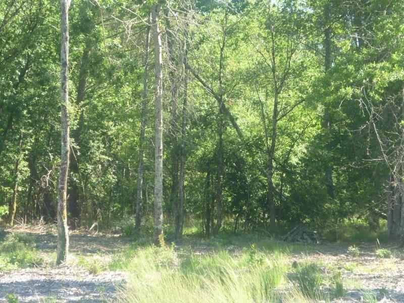 Vente terrain Saugnac et muret 85000€ - Photo 1